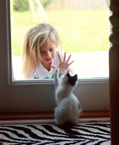 Що робити дитині, коли дзвонять у двері або намагаються зламати їх зовні